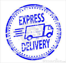 RNK Express Delivery LLC